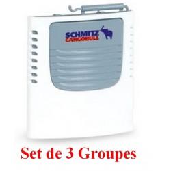 "Set de 3 Groupes frigo ""Schmitz Cargobull"""