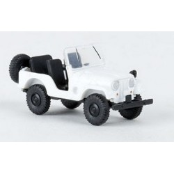 Jeep Universal CJ5 - 1952-57 blanche