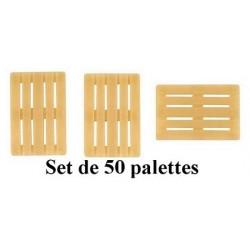 Set de 50 palettes