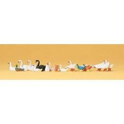 Set de canards, cygnes et oies